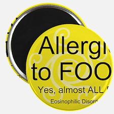 Cute Food allergy Magnet