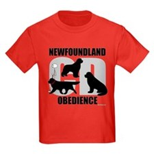 Newfoundland Novice CD T
