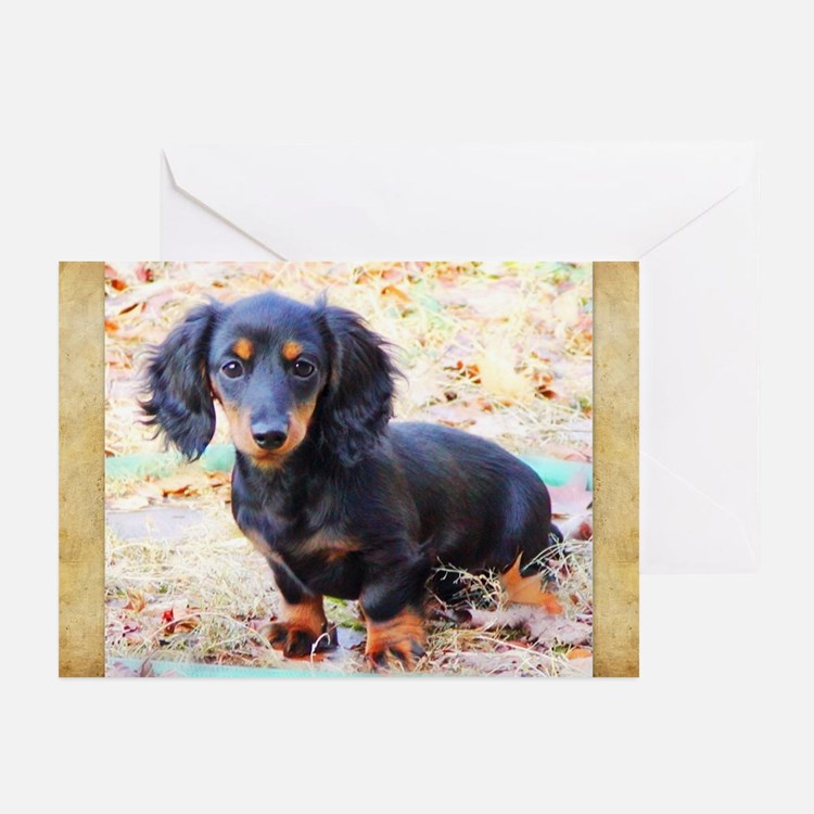 Puppy Love Doxie Greeting Cards (Pk of 10)
