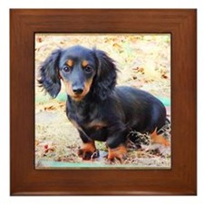 Puppy Love Doxie Framed Tile