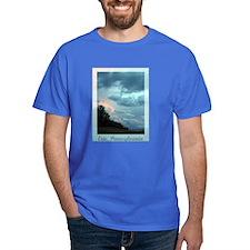 Erie, PA T-Shirt