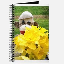 Ernie The Sock Monkey's Journal
