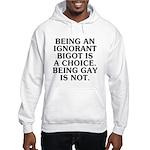 Being an ignorant bigot Hooded Sweatshirt