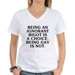 Being an ignorant bigot Women's V-Neck T-Shirt