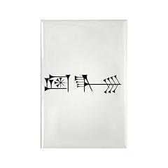 Amagi Rectangle Magnet (100 pack)