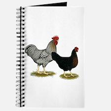 Black Sex-linked Chicken Pair Journal