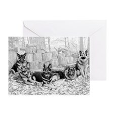 Mt Airy's Greeting Cards (Pk of 10) :2011