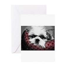 Funny Sleeping dogs Greeting Card