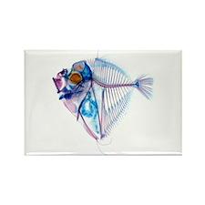 Blue Fish Rectangle Magnet