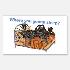 2Blks Where You Gonna Sleep Sticker (Rectangle)