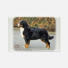 Bernese Mountain Dog 9T066D-221 Rectangle Magnet