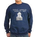 What would a scientist do? Sweatshirt (dark)