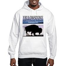 Bison Yellowstone National Pa Hoodie