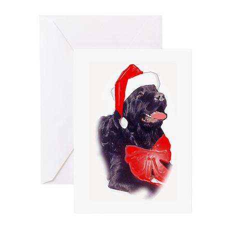 Santa Newf Greeting Cards (Pk of 10)