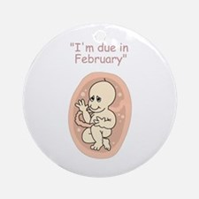 Baby due in February Ornament (Round)