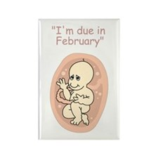 Baby due in February Rectangle Magnet