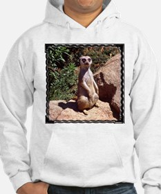 Meerkat On Rock Jumper Hoody