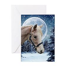 Winter Arabian #1 Xmas Card