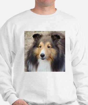 Unique Sheltie Jumper