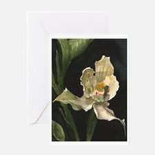 """""""White Orchid"""" Card (1) Greeting Cards"""