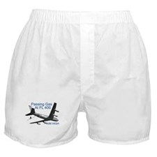 OTHER AIR FORCE DESIGNS Boxer Shorts