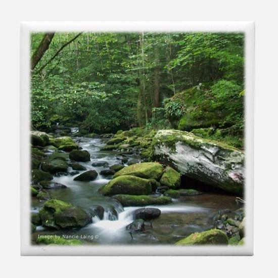 Rock Stream Gatlinburg TN Tile Coaster