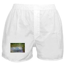 Monet Painting: Beauty Quote Boxer Shorts