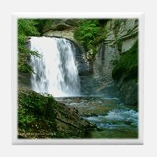 Looking Glass Falls NC 1 Tile Coaster