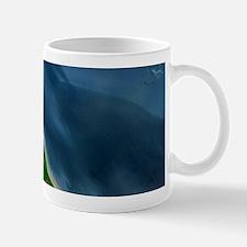 Coca River Mosquito Coast Satellite Mug
