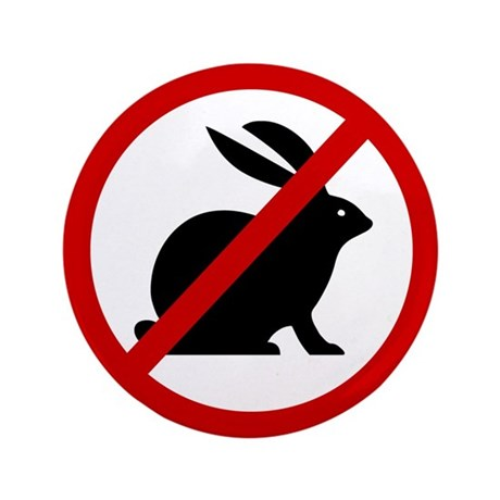 "Anti Bunnies 3.5"" Button (100 pack)"