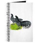 Blue Sumatra Chickens Journal