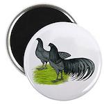 "Blue Sumatra Chickens 2.25"" Magnet (100 pack)"