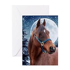 Winter Arabian #3 Xmas Card