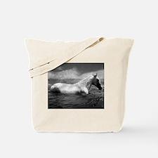 Apollo in the Lake - Tote Bag