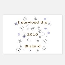 Blizzard 2010 Postcards (Package of 8)