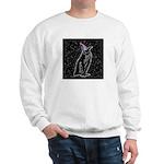 Party Penguin Sweatshirt