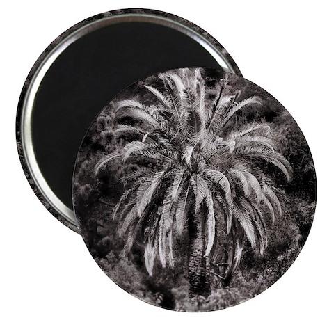 Pop Palm Magnets