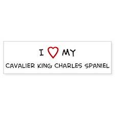 I Love Cavalier King Charles Bumper Bumper Sticker