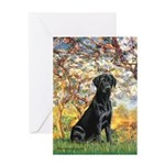 Spring & Black Lab Greeting Card
