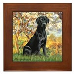 Spring & Black Lab Framed Tile