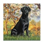 Spring & Black Lab Tile Coaster