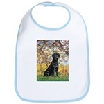 Spring & Black Lab Bib