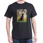Spring & Black Lab Dark T-Shirt