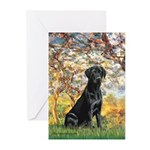 Spring & Black Lab Greeting Cards (Pk of 10)