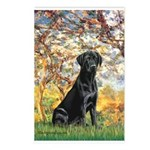 Spring & Black Lab Postcards (Package of 8)