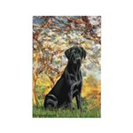 Spring & Black Lab Rectangle Magnet (10 pack)