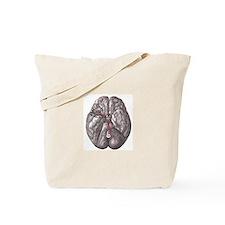 Gray's Anatomy Brain Tote Bag