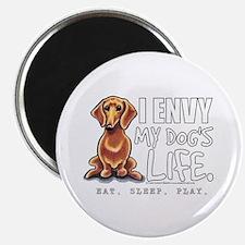 "Red Dachshund Envy 2.25"" Magnet (100 pack)"