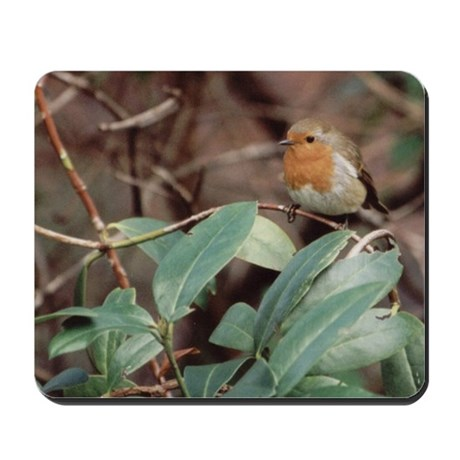 Robin Red Breast Mousepad