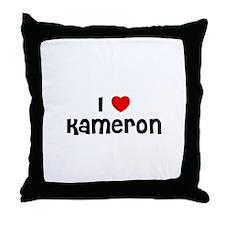 I * Kameron Throw Pillow